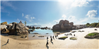 Panoramic view of penguins on Boulders Beach in C...