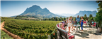 Group enjoying wine on a deck in a vineyard in th...