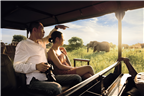Asian couple on a safari game drive and seeing el...