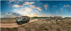 Group of friends on a game drive surrounded by an...