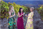 Three women wine tasting in a vineyard